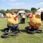Chatteris Midsummer festival 2013 1187